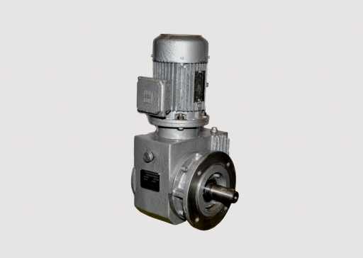 Flange Mounted with Solid Output Shaft